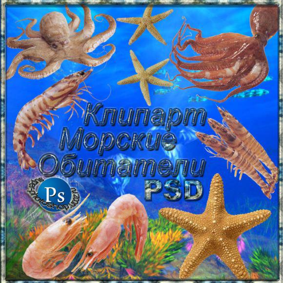 Клипарты для photoshop морские обитатели